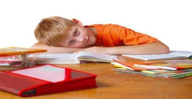 Homeschool Lesson Plans