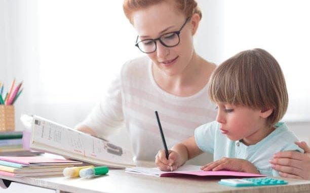 Best Homeschooling, Best Homeschooling Advice Right Now, Family Homeschooler, Family Homeschooler