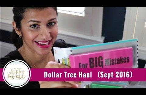 Dollar Tree Haul: Home & Homeschool (Sept 2016) || Project Happy Home