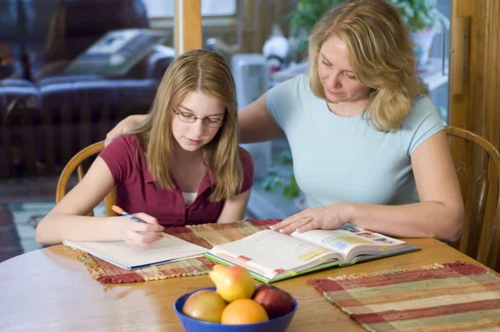 Home School, Home School Kids Invent Games, Family Homeschooler