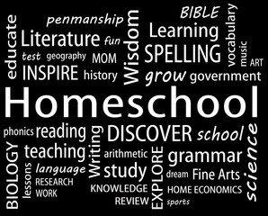 Homeschool Teacher Requirements, Homeschool Teacher Requirements-Your Role As Teacher, Family Homeschooler