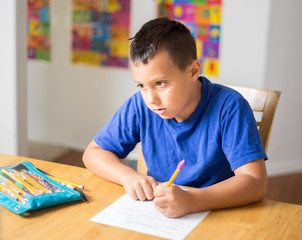 Homeschoolers, Homeschoolers Big Tip-Kids Pursue Passions, Family Homeschooler