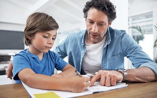 Teaching Children, Teaching Children-Understanding How to Homeschool, Family Homeschooler