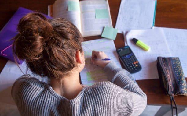 successful homeschool plans, Successful Homeschool Plans – Thriving Families, Family Homeschooler